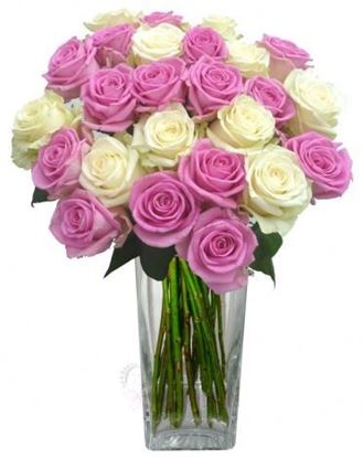 Picture of Simple and elegant long stemmed icelandic roses - mix of pink and white.