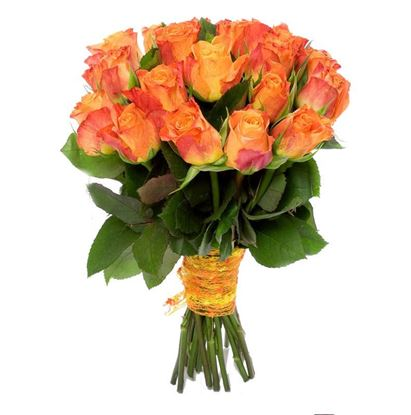 Picture of Strong orange long stemmed roses in the harsh icelandic climate.