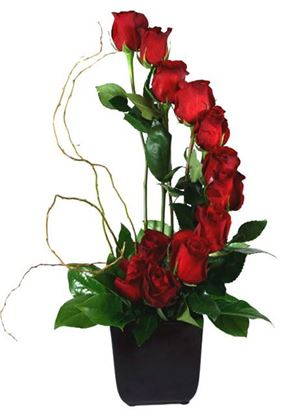 Picture of Contemporary rose arrangement in a vase with an accent of branches.