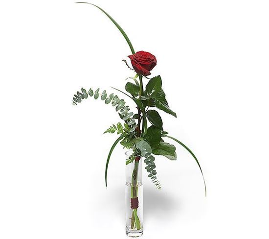 Picture of Gorgeous single romantic long stemmed rose with greenery-choose color!