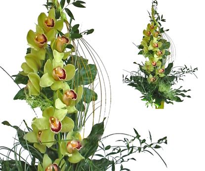 Picture of Very special and Modern  tropical green orchid bouquet