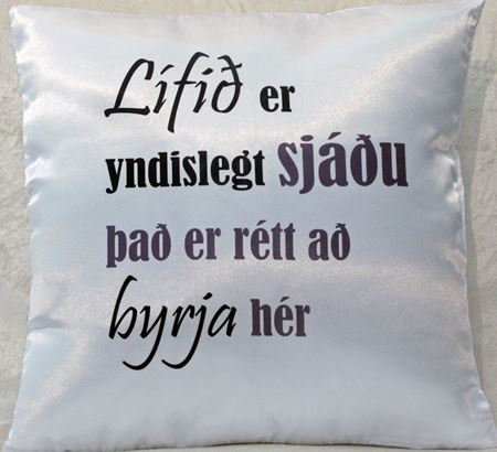 Picture for category Decorative Throw Pillow