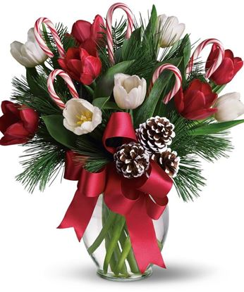 Picture of Happy Christmas bouquet with white and red tulips, pine branches, ribbon and more