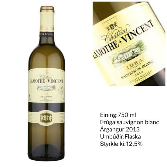 Picture of Chateau Lamothe Vincent Sauvignon Blanc white