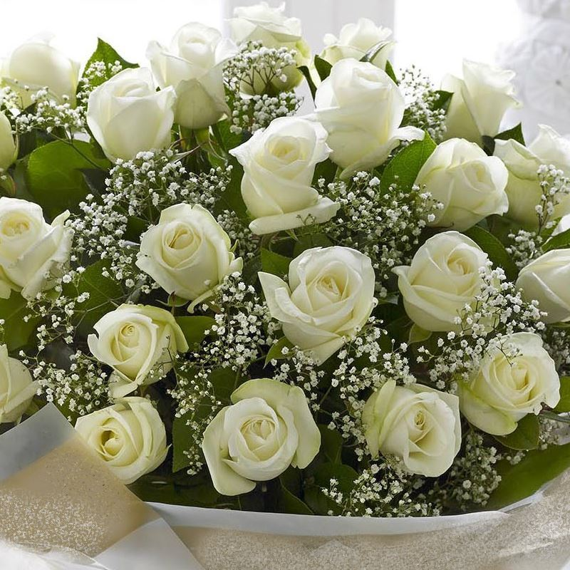 Classical and elegant bouquet with white short roses and baby breath picture of classical and elegant bouquet with white short roses and baby breath mightylinksfo