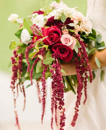Picture of Amazing Wedding bouquet with roses, amaranthus, eucalypthus.